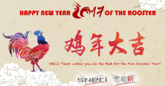 The SNECI Team Wishes You All The Best For The Year Of The Fire Rooster!
